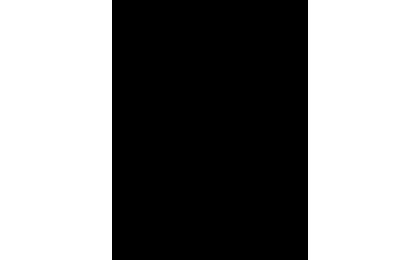 BOTTEGA-FINZIONI