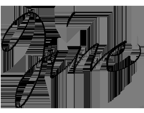 barbara-calzolari-calligrafia2